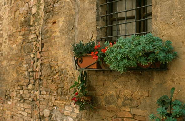 San Gimignano Flower Box