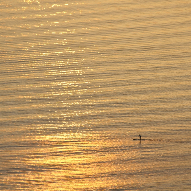Sun Up SUPing on San Francisco Bay