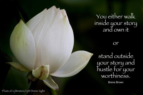 Lotus_worthiness_web