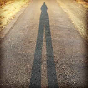day-129-long-leggy-shadow