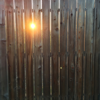 day-132-sun-thru-fence_6555