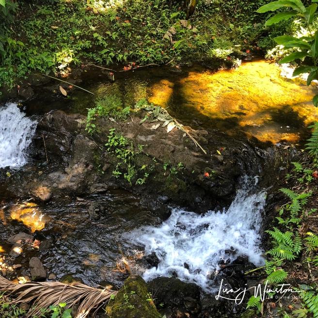 Dappled Light on Falls
