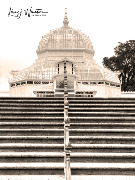 SF Conservatory of Flowers (sepia toned)