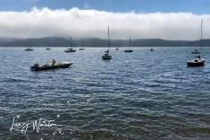Boats on Tamales Bay