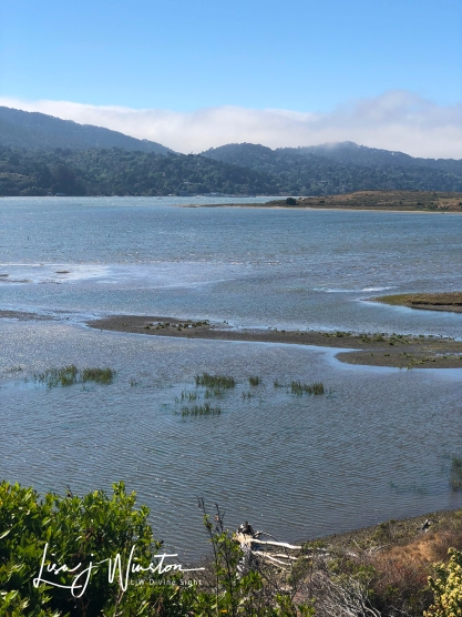 Shimmering Blue-Gray Tamales Bay