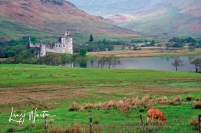 Country Castle_Scotland