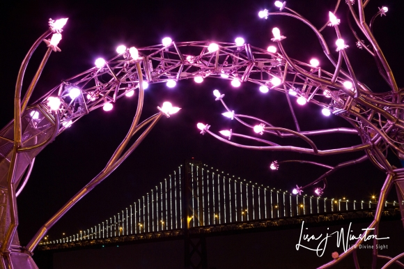 Bay Bridge Under Neurons