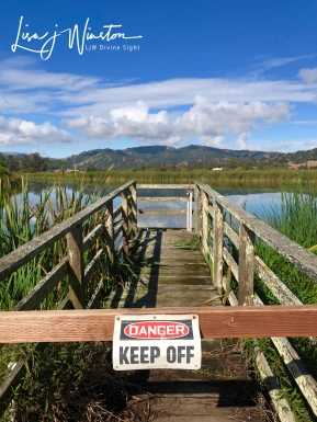 Marin Marshland - Keep Off