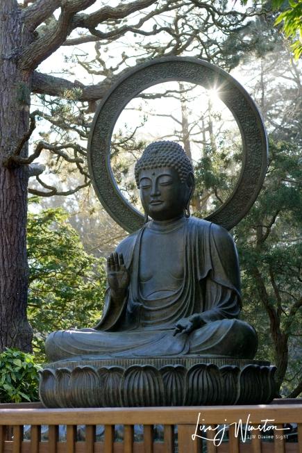 Tea Garden Buddha