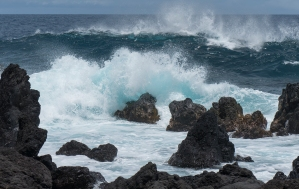 Laupahoehoe Surf