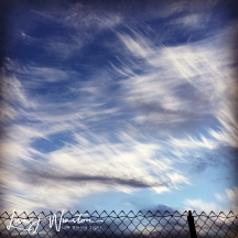Clouds & Fence