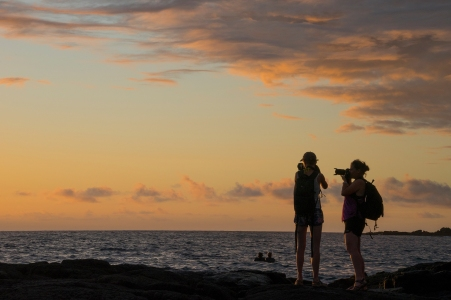Photographers at Honaunau