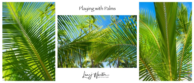 Playing with Palms